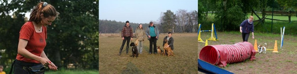 Hundeschule in Kamerun - Kameruner Hundeschule