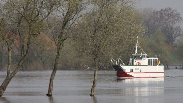 Fahrgastschiff auf der Elbe
