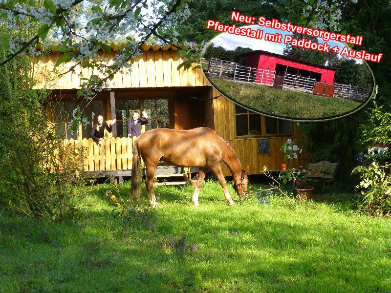 Leben mit Pferden - Wochenend-Bungalow